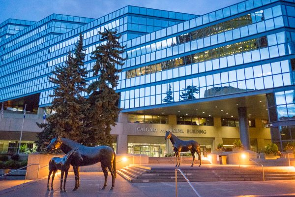 Pastviny najdete i v Calgary. :)